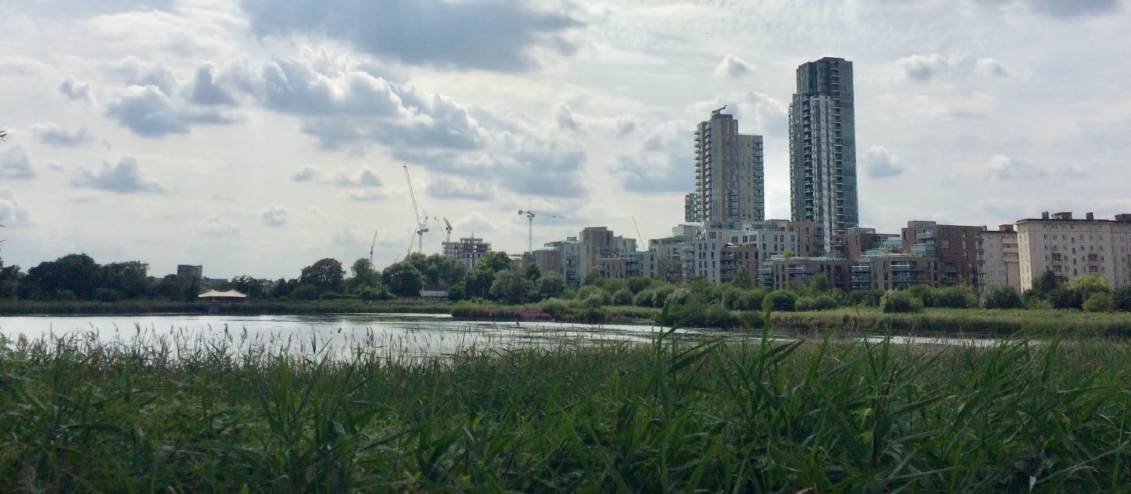 A picture of Woodberry Wetlands, showing the wetlands and Manor House developments.